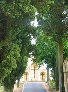 tuscans 195