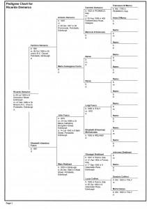 Wahlberg Family Tree